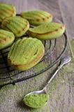 Green cupcake Royalty Free Stock Photos