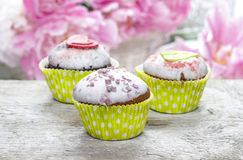 Green cupcakes Royalty Free Stock Images