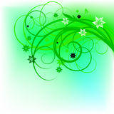 Green curl design. Green swirl design on white background Stock Image