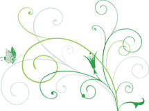 Green Curls Royalty Free Stock Image