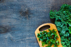Green curly kale Royalty Free Stock Image
