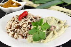 Green curry Royalty Free Stock Photography