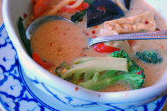 Green Curry. A Thai dish containing vegetables, coconut milk and green curry Royalty Free Stock Photography