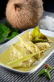 Green Curry Chicken Royalty Free Stock Image