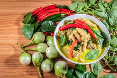 Green Curry Chickenon royalty free stock photography