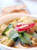 Green curry with coconut milk Royalty Free Stock Images