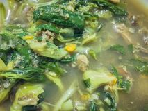 Green curry Northeast Thai food named Kaeng Om that contain wi. Th fish or meat and vegetable boiled with chili and herb for dinner Stock Images