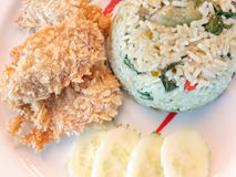 Green curry rice. And fried chicken,Thai food Royalty Free Stock Photos