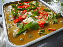 Green curry. Spicy Food of thailand Stock Photos