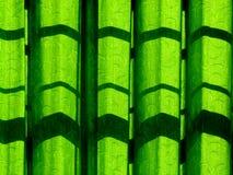 Green curtain Stock Photography