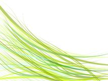 Green  curves. Illustration green curves abstract  background Stock Photos