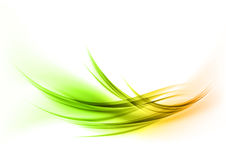 Green curves Stock Images