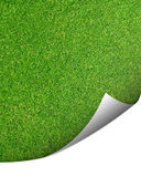 Green cut grass background with corner turned. Organic background of green cut lawn with a corner turned up for copy space stock photography