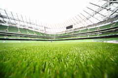 Green-cut grass in large stadium. At summer day, large soccer field, shallow depth of focus Royalty Free Stock Photography