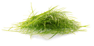 Green cutaway grass Stock Photos