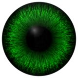 Green 3d eye texture with black fringe. And lines Stock Photography