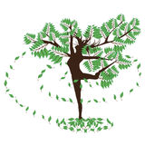 Green dance tree Royalty Free Stock Photography
