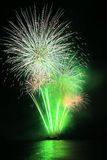 Green dandelion fireworks Stock Photos