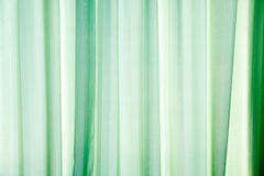 Green darpery background Royalty Free Stock Images