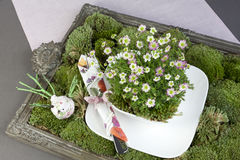 Green decoration with moss, flowers and tableware Stock Photos