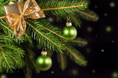Green decoration on a tree Royalty Free Stock Images