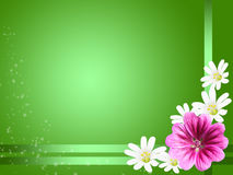 Green decorative card with some flowers Stock Photos