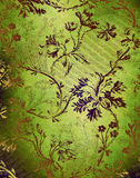 Green decorative floral background Stock Images