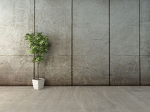Green decorative plant in a white rectangular pot Stock Photos