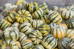 Green decorative pumpkins Royalty Free Stock Photos