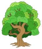green den lövrika treen vektor illustrationer