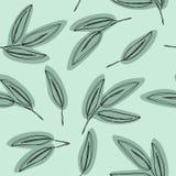 green den seamless leafmodellen Eukalyptuns lämnar bakgrund royaltyfri illustrationer