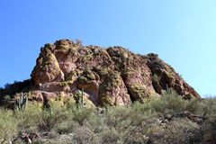 USA, Arizona: Green desert rock  Stock Photography