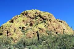 USA, Arizona/Sonoran Desert - Green Rock Stock Photos