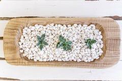 Desert rose on white pebbles inside a wooden bowl Stock Images