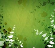 Green design Stock Photo