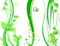 Green design Stock Photo