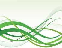 Green design. Green waves on white bacground Vector Illustration