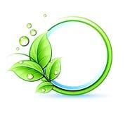 Green design Stock Photography