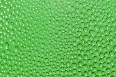 Green Dewdrops for pattern and background Stock Photography
