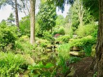 Green of Dewstow Gardens. Dewstow Gardens Caerwent Caldicot Wales united kingdom royalty free stock images