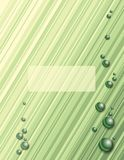 Green Diagonal Stripes Royalty Free Stock Photo