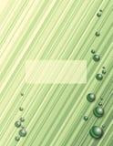 Green Diagonal Stripes Royalty Free Stock Photo