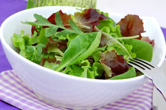 Green diet salad with lettuce, arugula and spinach. Fresh green lettuce, arugula and spinach salad stock image