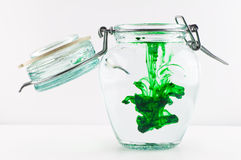 Green Diffusion. An antique jar full of water with green colour royalty free stock photos
