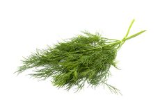 Green dill. Isolated on white Royalty Free Stock Image