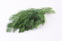 Green dill Stock Photos