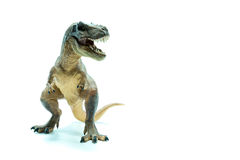 Green Dinosaur Tyrannosaurus Rex front view - white background Royalty Free Stock Photos