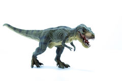 Green Dinosaur Tyrannosaurus Rex with open mouth in attack posit Stock Photography