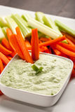Green dip with three carrot sticks. Creamy radish kale green dip with carrots and celery with three carrot sticks Royalty Free Stock Photo