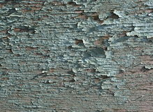 Green Distressed Background royalty free stock image